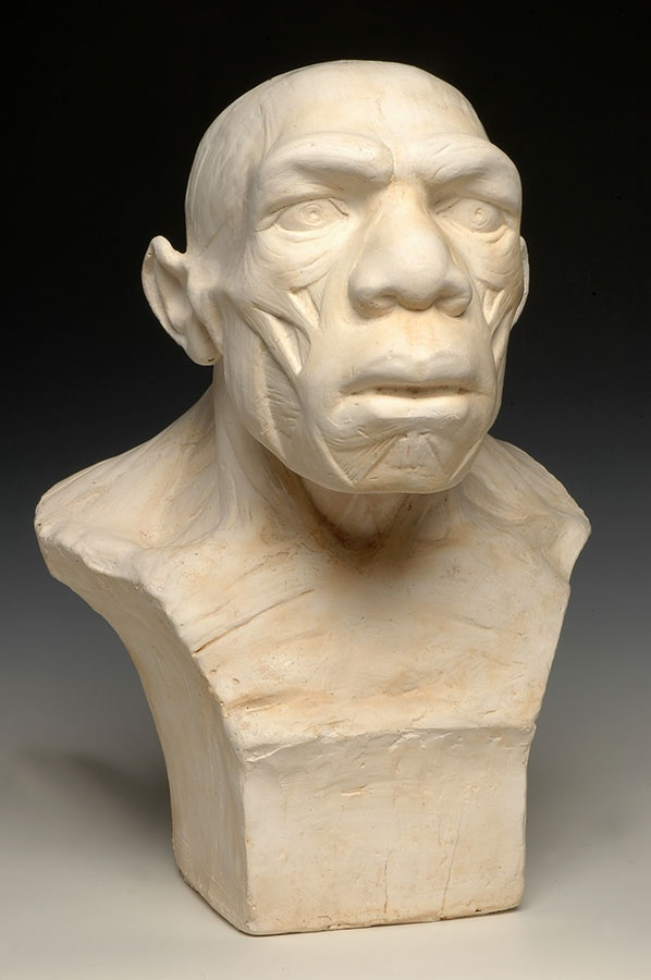 Plaster reconstruction of the bust of the Neanderthal man from La Chapelle-aux-Saints, by the sculptor Joanny Durand